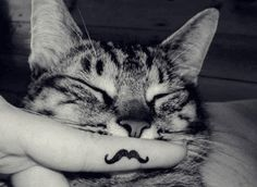 Always wanted a mustache.