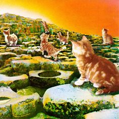 "Led Zeppelin - ""Houses Of The Holy,"" re-imaged with kitties!"