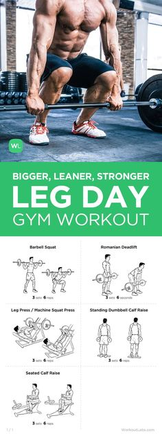 Free PDF Mike Matthews Bigger Leaner Stronger Leg Day Workout for Men