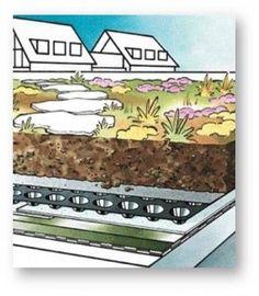 Différentes couches d'une toiture végétalisée extensive