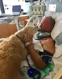 PETOSKEY, Mich. — AMichigan man is recovering from a near-death experience thanks to his dog's heroic actions.  On New Year's Eve, a man only identified as Bob went outside to get a log for his fireplace. Wearing only his slippers, long Johns and a shirt, Bob slipped and fell, breaking his neck.