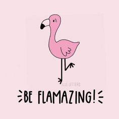 Be Flamazing! Cheeky cartoon flamingo design Flamingo Art, Pink Flamingos, Flamingo Puns, Fun Sayings And Quotes, Funny Quotes, Me Quotes, Be A Pineapple Quote, Painted Rocks, Funny Animals