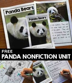 Free nonfiction panda activities including a reader and writing activities. Compare and contrast real pandas with the movie Kung Fu Panda Panda Activities, Literacy Activities, Nonfiction Activities, Panda Information, Panda Craft, Bear Theme, Jungle Theme, Little Panda, Kung Fu Panda