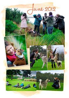 Pet Photography Workshops, Melbourne Australia
