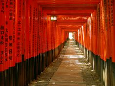 "to the Fushimi Inari-taisha shrine of Inari in Fushimi-ku, Kyoto, Japan.  Dedicated to the Fox Spirit, ""Inari,"" or the spirit of the rice in storehouses. So beautiful during the day or night."
