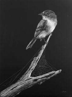 Birds Lori Dunn