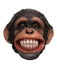 Look at this Smiling Chimp Money Bank on #zulily today!