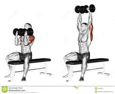 Exercising. Alternating Dumbbell Bench Press With  - Download From Over 45 Million High Quality Stock Photos, Images, Vectors. Sign up for FREE today. Image: 43825937