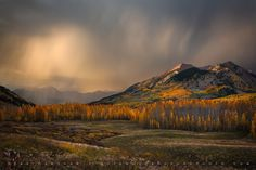 Autumn Thunder by Sean Bagshaw on 500px