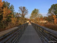 Hike on boardwalks to observe wildlife, or trails to explore the swamp.