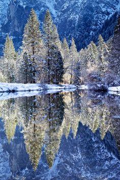 Merced River Backlit Trees, Yosemite Valley