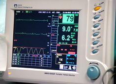 cardio.cardiology,kardiologia,heart beat,cardiology pets,animals,veterinary,weterynaria