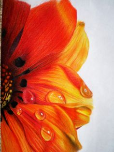 Made from colored pencils