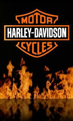 Harley Davidson Road King Art vrod harley davidson v rod. Harley Davidson Logo, Harley Davidson Chopper, Harley Davidson Sportster, Harley Davidson Watches, Harley Davidson Kunst, Harley Davidson Roadster, Harley Davidson Tattoos, Harley Davidson Wallpaper, Motor Harley Davidson Cycles