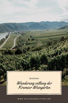 Wachau: Wanderung entlang der Kremser Weingärten   daisiesandglitter Vineyard, Mountains, Nature, Travel, Outdoor, Small Places, Climbing, Hiking, Outdoors