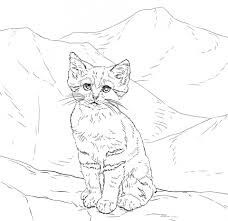Sitting Red Fox Coloring Page