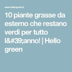 10 piante grasse da esterno che restano verdi per tutto l'anno!   Hello green