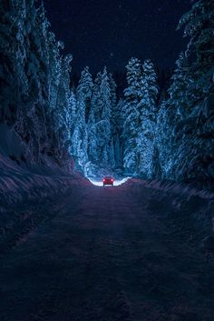 Snowy Night, Bulgaria