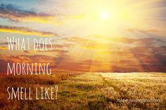 #writingprompts #writing #morning