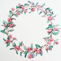+1 #венок , осталось еще 2. Следующий с космическим цветком✴ #wreath #botanicalillustration #botanical #snowberry #illustration #drawing #illustrator #merrychristmas #watercolor #watercolorflowers