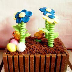 Blumenkasten-Torte mit KitKat