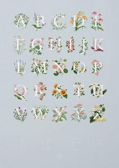 Beautiful Typography Alphabet Design (88)
