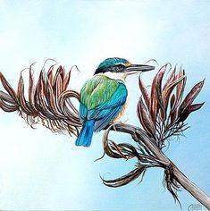 craig platt nz bird and wildlife artist New Zealand Image, New Zealand Art, Art Maori, Doodle Images, Bird Artists, Nz Art, Mural Art, Murals, Kiwiana