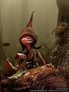 Pixie Mythical Creature General claims about pixie Woodland Creatures, Magical Creatures, Kobold, Elves And Fairies, Dragons, Illustration, Jolie Photo, Fairy Art, Fairy Dolls
