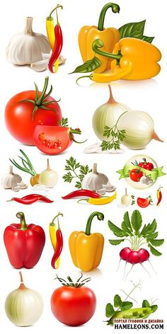 кастрюля рисунок ЛОГОТИП - Поиск в Google Fruit And Veg, Fruits And Vegetables, Vegetable Pictures, Food Clipart, Food Graphic Design, Food Drawing, Fruit Art, Food Illustrations, Fish And Seafood