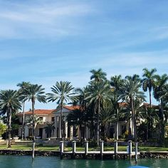 If you once tried that little blue pill to enhance your vigor you paid for this mansion the most expensive on owned by Dr. Blue Pill, Magic City, Sunshine State, Florida, Mansions, Frost, Pine, Plants, Miami