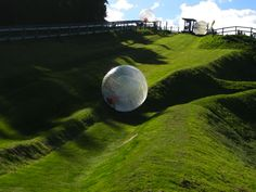 Go zorbing  Ever wanted to throw yourself down a hill inside a giant hamster ball? Well you can do it in Rotorua! It's called zorbing, and it's really really fun.