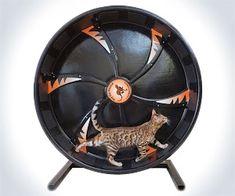 Cat Hamster Wheel | DudeIWantThat.com
