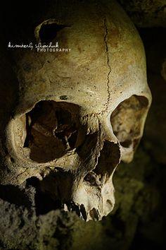 _skull__by_livingdead01-d2zdvt1.jpg 2,848×4,272 pixeles