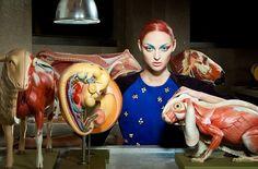 Lucia Giacani's Interesting-Yet-Bizarre Fashion Photos Of Models And Animal Anatomy