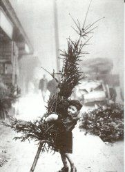 The 15 Most Charming Vintage Holiday Photos Unusual Christmas Trees, Ghost Of Christmas Past, Christmas Night, Noel Christmas, Christmas Cards, White Christmas, Christmas Mantles, Christmas Ornaments, Family Christmas