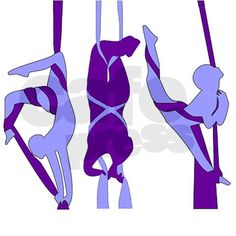 I think it would be amazing to have aerial silk dancers at my wedding!!
