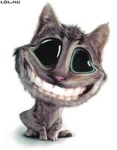 Vicces,mosolygós macsek!Megnevettet!:)