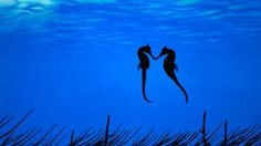 CUTE ALERT! We love these seahorses, so obviously in love!