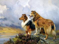 Wright Barker (1864-1941) Two Collies above a lake.