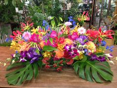Tropical Flowers, Tropical Party, Summer Wedding, Floral Arrangements, Rustic Wedding, Orchids, Marie, Wedding Decorations, Reception
