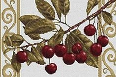 Luca-S : Branch with cherries