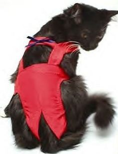 c9545963d Joybies Red Piddle Pants for Small Cat (Measuring Along Back From Collar to  Base of Tail)