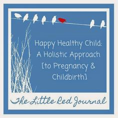 The Little Red Journal: Happy Healthy Child—A Holistic Approach [to Pregnancy & Childbirth] #birth