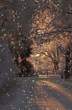 ideas for nature winter wonderland snow scenes Winter Szenen, Winter Love, Winter Magic, Winter Christmas, Winter Night, Christmas Lights, Christmas Christmas, Foto Gift, Foto Picture