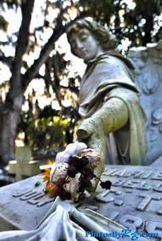Bonaventure Cemetery is one of the most beautiful spots in the area. www.photosbyrb.com