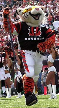 It's Whoooo Dey!!!  Cincinnati Bengals....that's the team we're gonna cheer to victory!