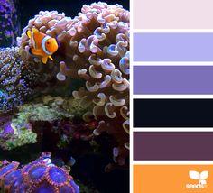 { color swim } image via: @carolyn.eve #color #palette #designseeds #seeds #seedscolor