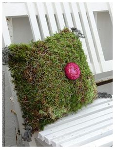 Moss planted pillow for garden bench - Isas Garden: Mossy pillow with sheep wool . - Moss planted pillow for garden bench – Isas Garden: Mossy pillow with sheep wool fabrics - Chicken Wire Art, Chicken Wire Crafts, Container Plants, Container Gardening, Gardening Books, Vegetable Gardening, Gardening Tips, Backyard Projects, Garden Projects