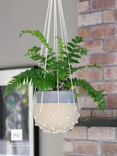 Excited to share this item from my shop: Pot Plant Hanger / Hanging Plant / Plant Hanger / Macrame White Large long) Macrame Hanging Planter, Macrame Plant Holder, Macrame Plant Hangers, Plant Holders, Hanging Planters, Metal Plant Hangers, Wall Plant Hanger, Pot Hanger, Terrarium Reptile