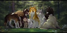 Our pack :)